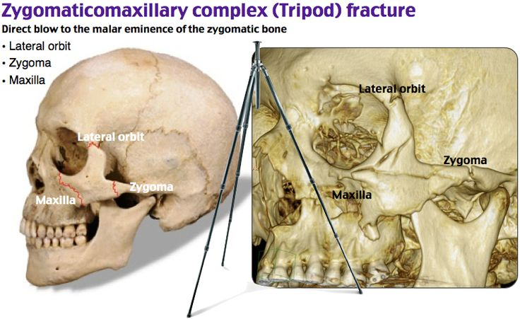 Free interacial deepthroat anal