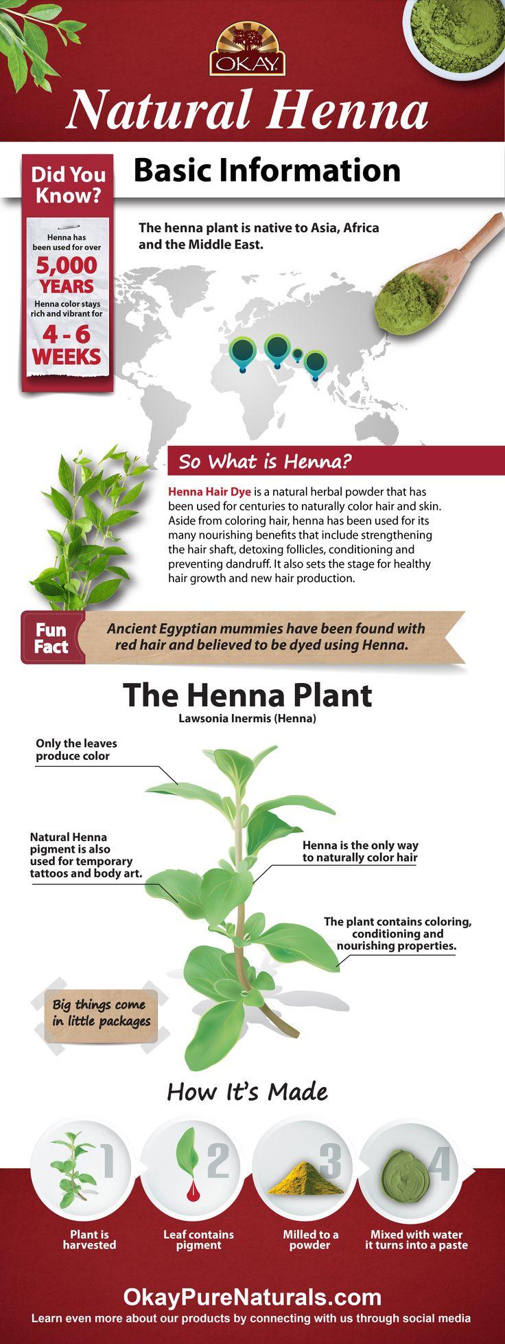 the 25 best henna hair color ideas on pinterest henna