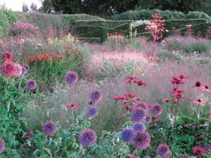 Piet Oudolf is obsessed with perennials. As a designer and cultivator, he is changing the definition of a garden in its prime.