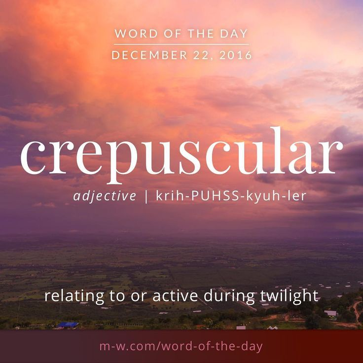 The #wordoftheday is crepuscular. #merriamwebster #dictionary #language
