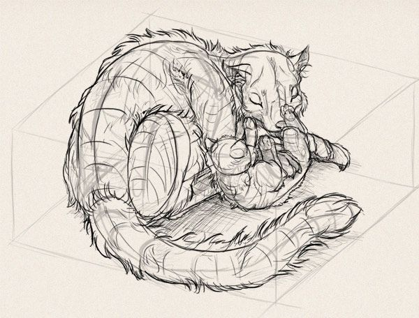Живая перспектива: как рисовать животных в 3D пространстве (Часть 3)