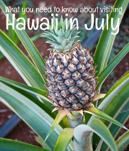 july 4th activities oahu