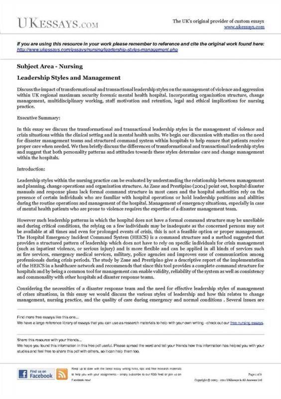 Leadership Essay Example