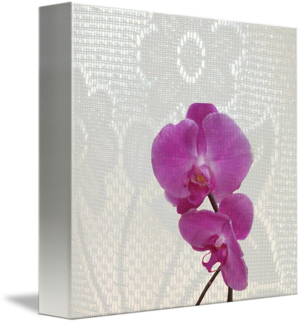 """""""orchids+one+b""""+by+Vivien+Jane+C,+Rome+//++//+Imagekind.com+--+Buy+stunning+fine+art+prints,+framed+prints+and+canvas+prints+directly+from+independent+working+artists+and+photographers."""