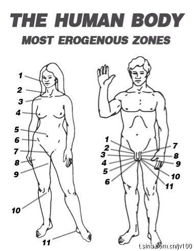 Ladies erogenous zones