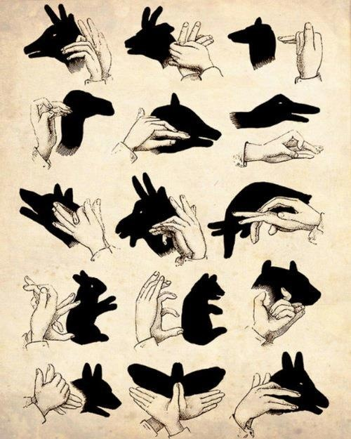 Spirit Totem Animals: How to Make Shadow Animals.
