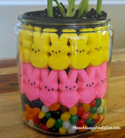 How to Make a Peeps and Tulips Centerpiece