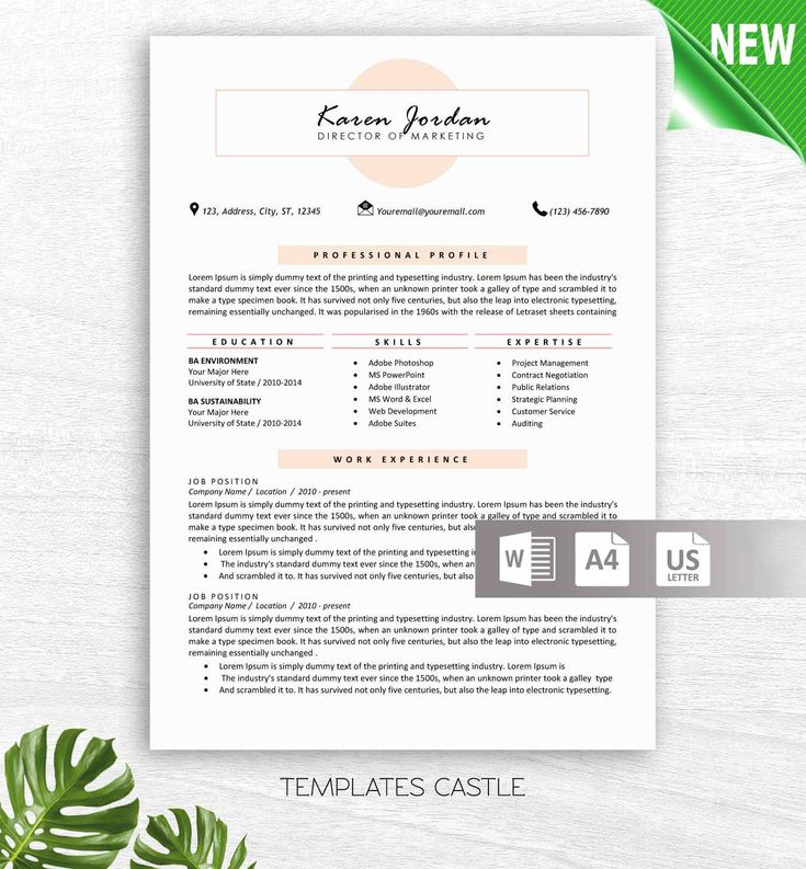 Professional Resume Template, Resume Template Instant Download, Free Resume Template, Cover Letter + References Included, Editable Resume by TemplatesCastle on Etsy https://www.etsy.com/listing/573708459/professional-resume-template-resume