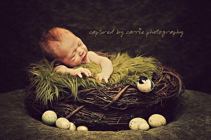 SET Olive Fur and Wood Branch Nest Owl Bird Photography Prop Newborn Baby Infant. $69.00, via Etsy.