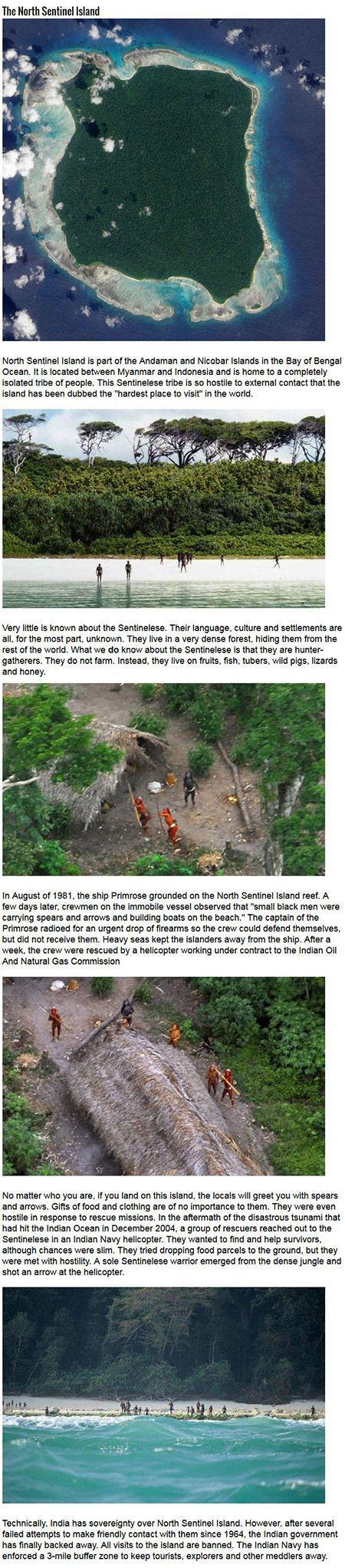 What Kind Of Animals Live On North Sentinel Island