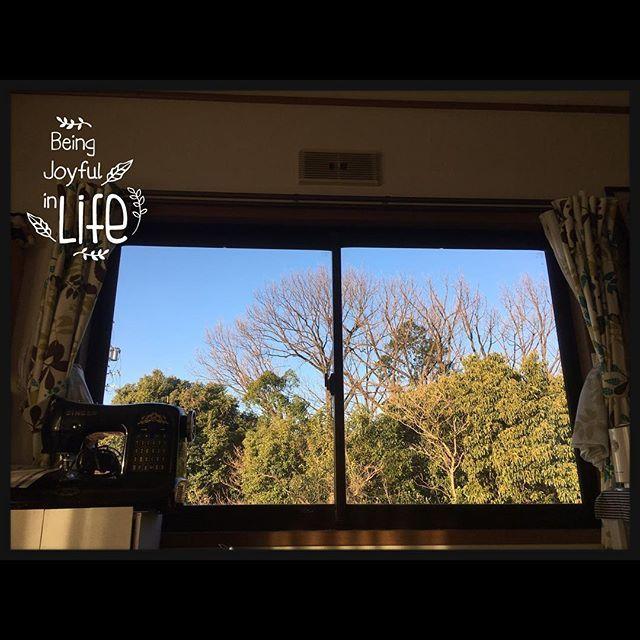 【cocoa_617】さんのInstagramをピンしています。 《バイオ7のグロテスク実況プレイ動画を心臓バクバクになりながら見て目覚めた爽やかな朝です(͏ ˉ ꈊ ˉ)✧˖°笑  風は冷たいけど良い天気になったので2日分の洗濯物も乾きそうで嬉しい♡😃 寝室兼アトリエ部屋の窓から見た景色が絵画みたいで綺麗だった♡  #窓#木#森#グリーン》