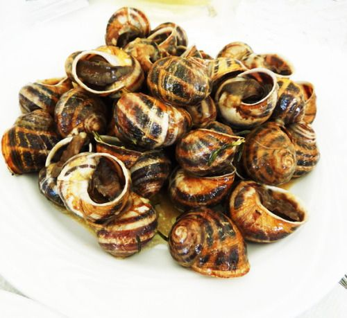 Snails in saor: fried snails with rosemary, garlic, vinegar or wine. In Crete we call them boubouristi    which means 'with their head looking down'.