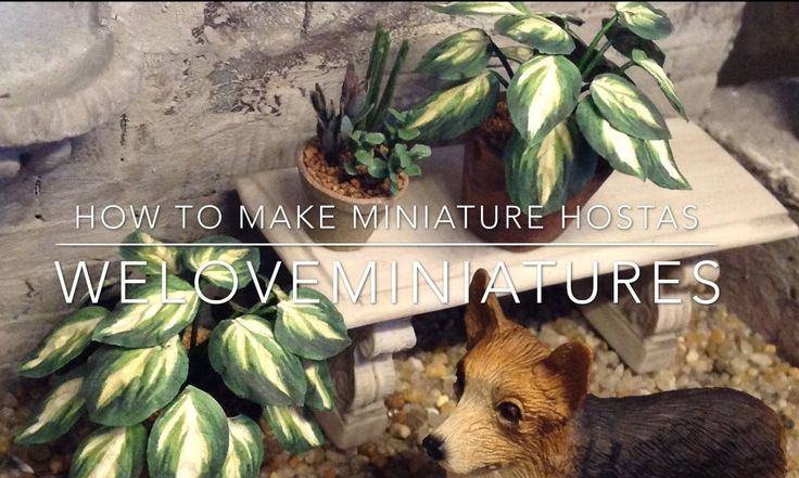 Miniature Hosta tutorial - We Love Miniatures