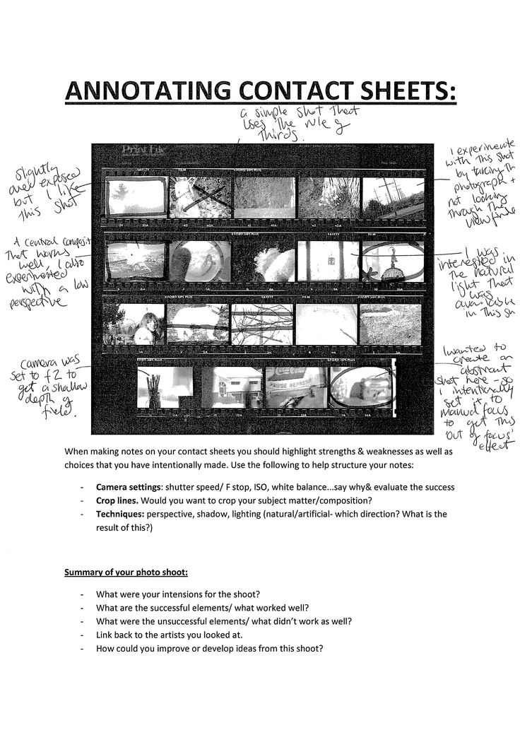 contact sheet annotation