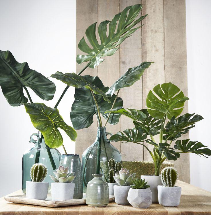 Leuk, maar wel met echte planten