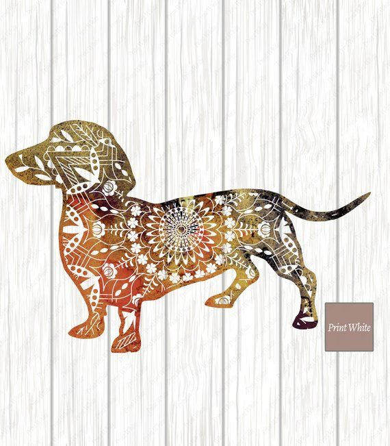 Dachshund Sublimation Design Sausage Dog Clipart For Image