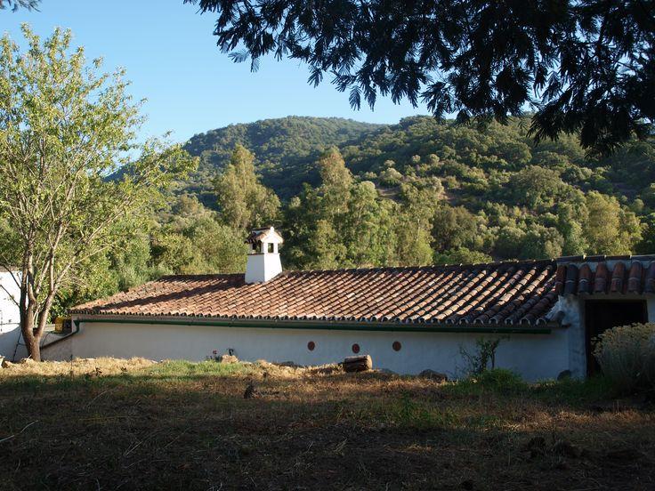 vistas desde la entrada al parque natural de los alcornocales