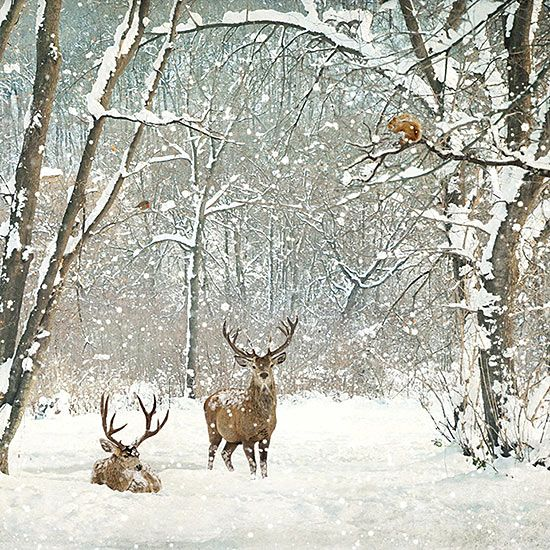 ✻BugArt Christmas Landscapes ~ Deer Woods. CHRISTMAS LANDSCAPES Designed by Jane Crowther. Original Art Photography by Lynnette Henderson.
