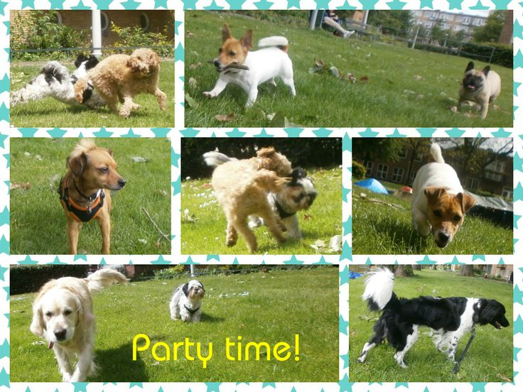 Party time!!
