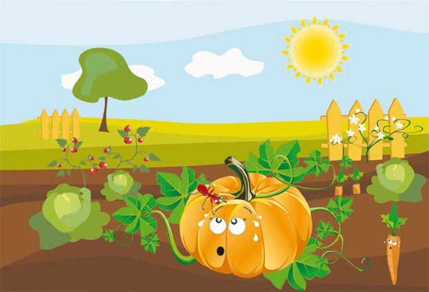 Histoire Halloween pour les enfants – Les citrouilles se vengent !