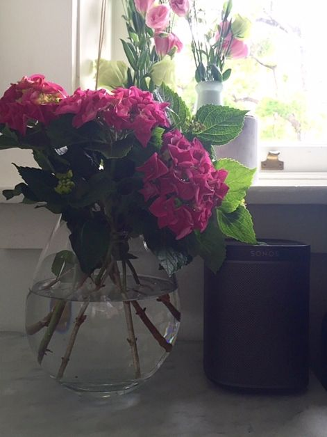 Sally Bay -interior design -interior decoration -styling -home -homewares -floral -vase -marble -coffee table -architecture -sonos -hydrangeas -pink   Instagram: @sally_bay  Website: www.sallybay.com.au