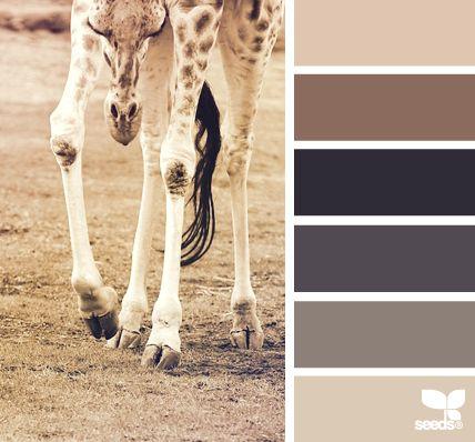 giraffe tones - voor meer kleurinspiratie en kleurentrends check ook http://www.wonenonline.nl/interieur-inrichten/kleuren-trends-2014/ eens