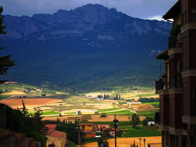 "Spain: The red ""Wine-paths"" in La Rioja  Countless vineyards form a huge red heart beneath the sun in northern Spain.."