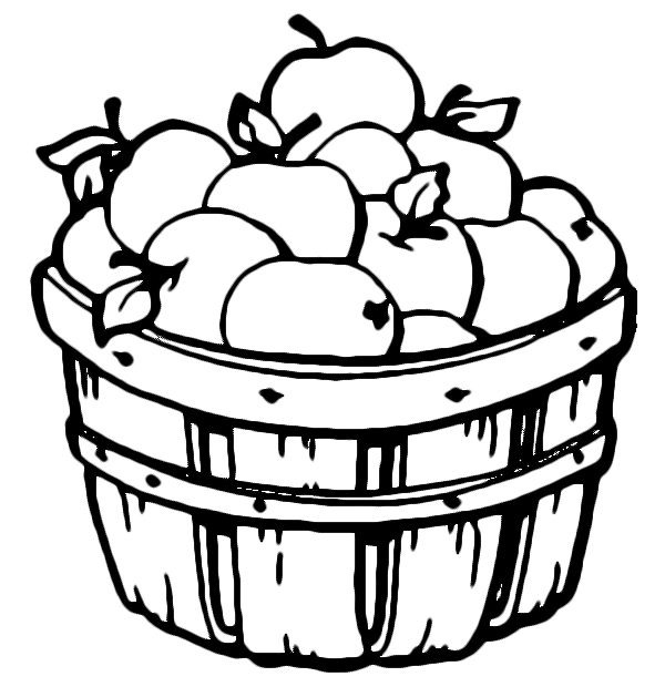 Taa is for Tufah ( Appleas, تفاح)  Barrel of apples coloring page - Free Printable Coloring Pages
