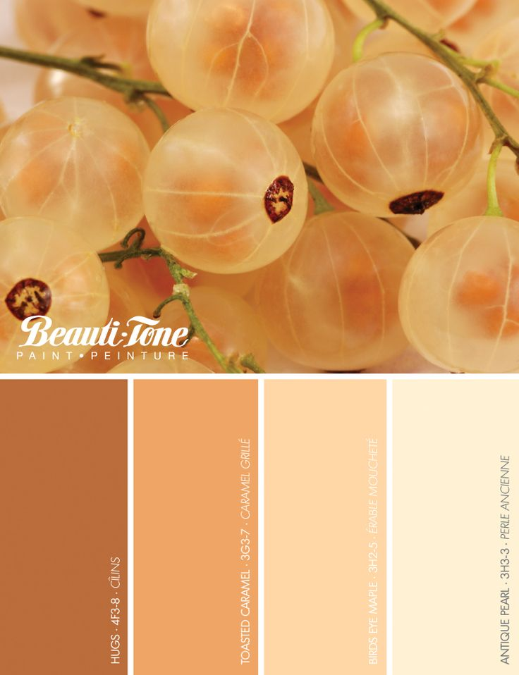 Fall in love with your home with a new coat...of #BeautiTone paint in autumnal hues inspired by #nature.