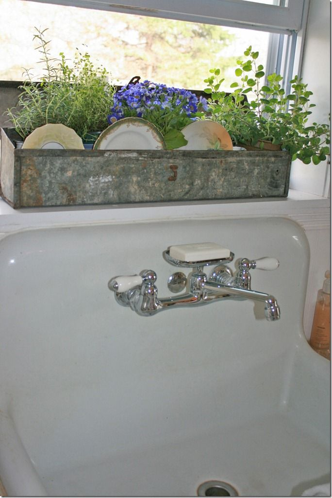 Pretty use for an old tin box! Love the vintage plates coupled with plants!