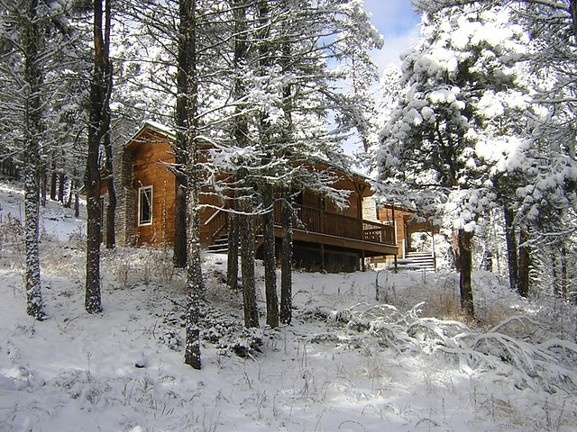 snow- Elk CABIN - The RETREAT at Angel Fire, NM
