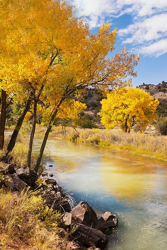 An Autumn Scene by the Rio Grande