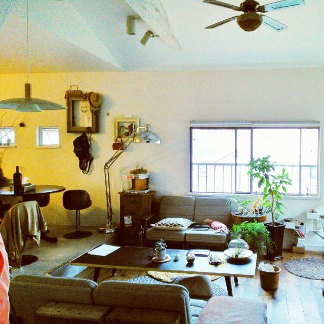 kaorinさんの、部屋全体,照明,植物,ソファ,green,リノベーション,リノベーション*元は和室,皆様今日もお疲れ様でした(⌒‐⌒),変わらぬ風景( 〃▽〃),のお部屋写真