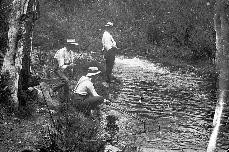 Fishing at Wartook, Victoria, 1911 - Museum Victoria