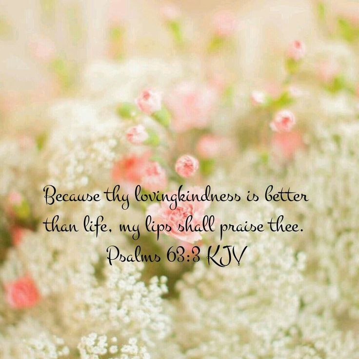Psalm 63:3 KJV …
