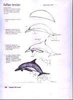 Altri animali da disegnare