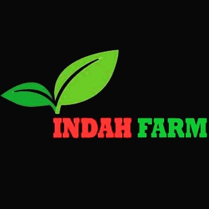 Indah Farm Menjual Berbagai Macam Produk Hidroponik Mulai Dari
