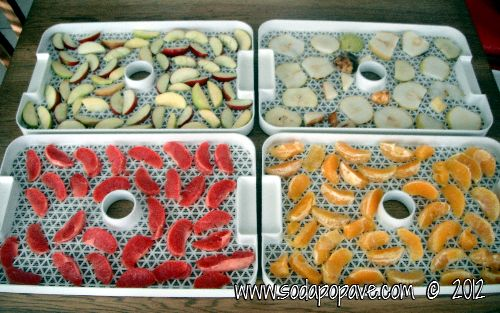 How to dehydrate fruit, step by step