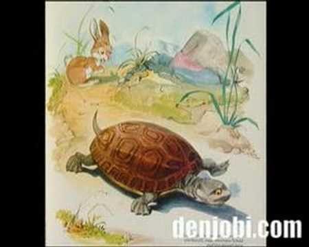 De Haas en de Schildpad - fabel van Aisopos