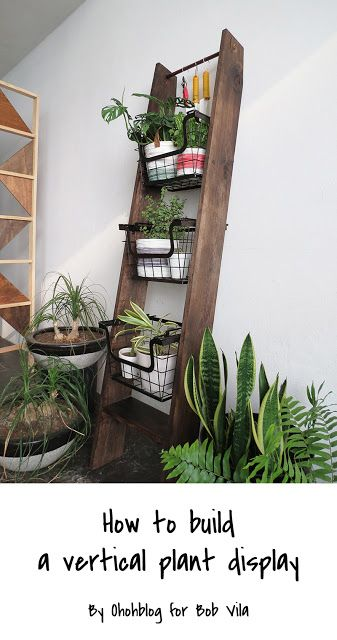 A nice way to freshen your space is adding house plants. You can choose to put them on a window ledge or to display them on a plant stand. With Bob Vila we had an… | Pinterest: Natalia Escaño