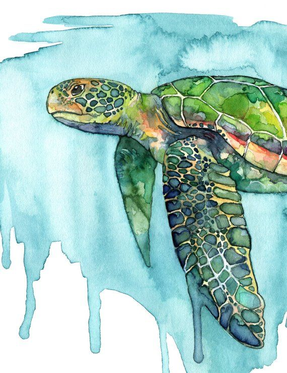 Sea Turtle Painting Watercolor Painting Sea Turtle Print Sea
