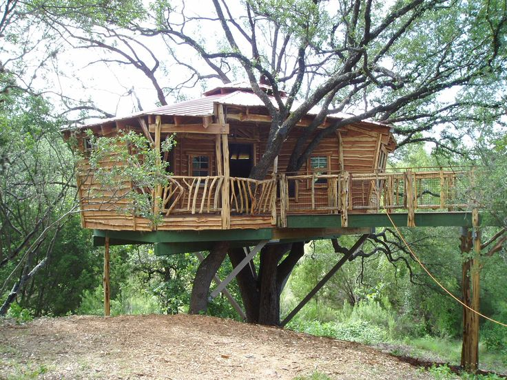 13 best images about treehouse on pinterest for How to build a simple treehouse