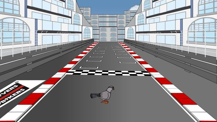 Los MiniDrivers - Matrix Pigeon of the 2013 Monaco GP