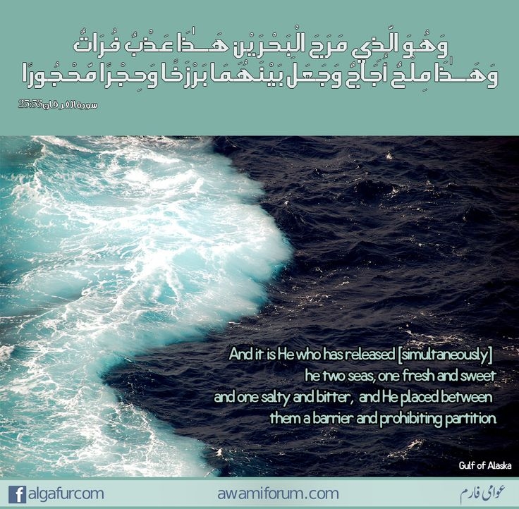 #quranic_quotes #quran_quotes #al_quran #quran #quranic_verses  وَهُوَ الَّذِي مَرَجَ الْبَحْرَيْنِ هَـٰذَا عَذْبٌ فُرَاتٌ وَهَـٰذَا مِلْحٌ أُجَاجٌ وَجَعَلَ بَيْنَهُمَا بَرْزَخًا وَحِجْرًا مَّحْجُورًا  Surah 25:53  And it is He who has released [simultaneously] the two seas, one fresh and sweet and one salty and bitter, and He placed between them a barrier and prohibiting partition.