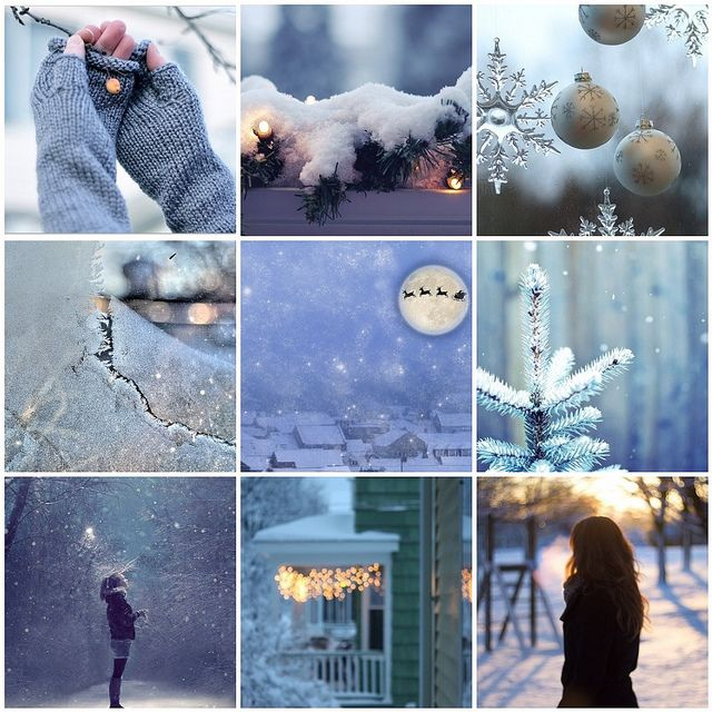 More festive beauty from Raincloud via Flickr http://www.flickr.com/photos/41527244@N04/8270933499/in/photostream/  Dialogues with December | Flickr - Photo Sharing!