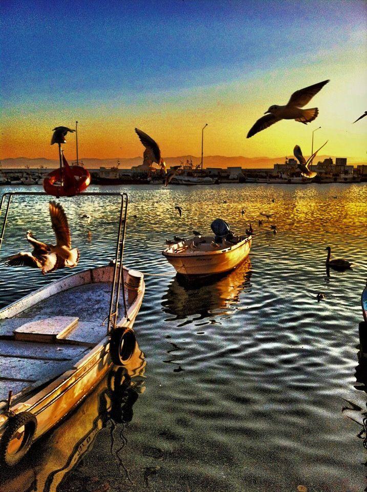 Day 3 - Sinop