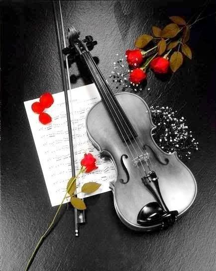 This is an awesome photograph of a violin and bow .