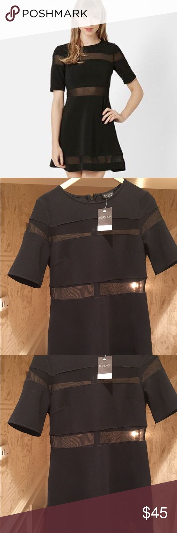 NWT Topshop Sheer Black Panels Skater Dress New with Tags! This is a size 12 Topshop dress in black with sheer panels. Very stylish sheer panels perfect for a formal event. In new condition, unworn, with tags. Please let me know if you have any questions! 💕💕 Topshop Dresses Mini