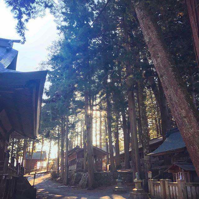 【yukohany】さんのInstagramをピンしています。 《立春の朝は長野県伊那市へ出張に。 早起きして諏訪大社へ参拝。 寒っ!地面が凍っている! 拝殿までのこの遠回りなアプローチが たまらなく好きです。  #共感覚 やっぱり ラヴェル 展覧会の絵  #神社仏閣 #team_jp_ #shrine #奥行き同盟 #日本建築 #影 #木 #tree #sunrise #朝日#写真撮ってる人と繋がりたい #音楽好きな人と繋がりたい #音楽好き #緑 #森 #cooljapan #lovejapan》