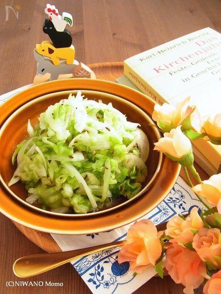 クラウトザラート (ドイツ風キャベツサラダ) by 庭乃桃 / しゃきしゃきのキャベツをたっぷり使ったドイツのサラダ。甘酢っぱい食べやすい味付けと、消化を促進してくれるスパイス、キャラウェイが入っているので、ボリュームのあるお料理の付け合わせにぴったりです♪ / Nadia